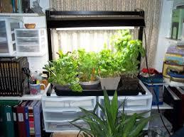 Window Sill Herb Garden Designs Garden Ideas Kitchen Window Garden Ideas Small Indoor Herb
