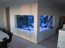 Okeanos Aquascaping 608 Best Aquarium Images On Pinterest Aquarium Ideas Freshwater