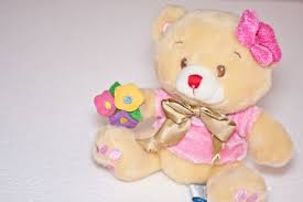 how to choose a teddy bear 11 steps with pictures wikihow