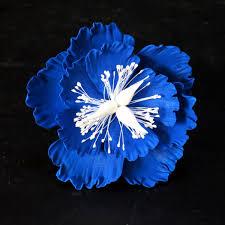 royal blue royal blue medium peony
