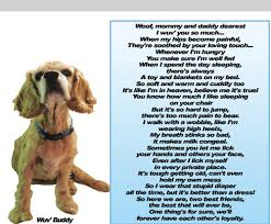 when a pet dies mimi speaks how do you cope with grief when your beloved pet dies