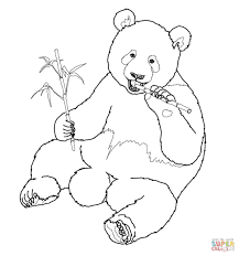 giant panda eats bamboo coloring page free printable coloring pages