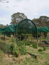 garden projects aussie organic gardening