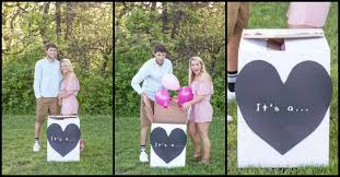 gender reveal announcements announces puppy adoption using gender reveal