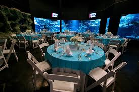 cheap wedding venues tulsa the oklahoma aquarium tulsa ok djconnection tulsa venues