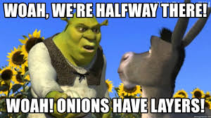 Halfway There Meme - woah we re halfway there woah onions have layers the shrek
