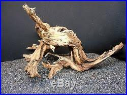 Aquascaping With Driftwood Mopani Driftwood For Freshwater Tank Fish Aquariums Reptiles