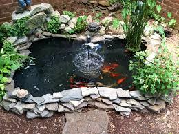 goldfish pond 2013 water gardens pinterest goldfish pond