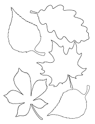 coloring pages of leaf shapes autumn leaves templates etame mibawa co