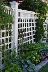 best 25 backyard fences ideas on pinterest fencing fence ideas