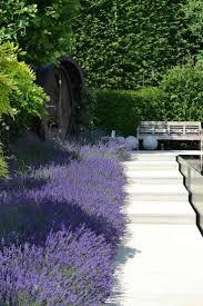 image amenagement jardin the 25 best deco jardin zen ideas on pinterest deco piscine