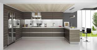 Best Rta Kitchen Cabinets by Kitchen Solutions Organization Ideas For The Inside Of Cabinet