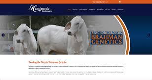 Design House Online Australia Australia Cattle Web Design Ranch House Designs Inc