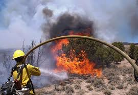 the office of wildland fire u s department of the interior