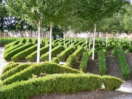 Bambus Garten Design Eghn U2013 Schlosspark Dyck