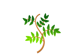 clipart leaves and branches 2