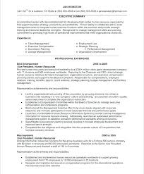 resume template sles sales executive resume sle unique sales executive resume