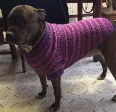 crochet pattern for dog coat crochet large dog coat large dog coats largest dog and free pattern