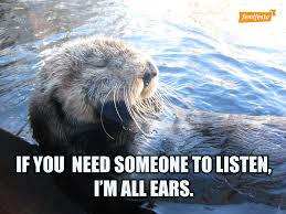 Otter Memes - rape culture taking over your timeline these supportive otter memes