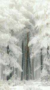 1737 best images about winter on pinterest winter wonderland