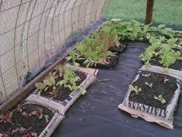 Design My Backyard Garden Design Garden Design With Some Aspects Of My Shade House
