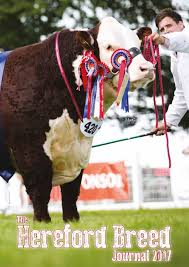 lexus bree van de kamp hereford breed journal 2017 by uk herefords issuu