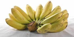 Obat Hiv temuan baru pisang ternyata obat hiv aids artikel pertanian