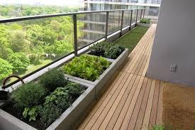 gem se pflanzen balkon balkongarten anlegen frisches gemüse in kübeln anbauen
