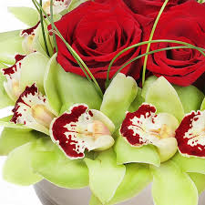 Flower Delivery Nyc Exotic Charm Flower Delivery Nyc Plantshed Com