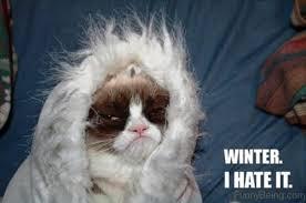 Hate Snow Meme - 97 funniest winter memes ever