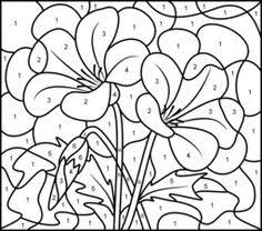 coloring pages adults color number coloring pages
