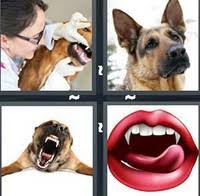 4 pics 1 word answers 6 letters pt 11 what u0027s the word answers