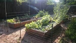 diy trellises for raised bed gardens album on imgur