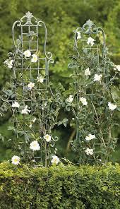 Rose Trellis Plans 410 Best Garden Pergolas Trellis Images On Pinterest Flower