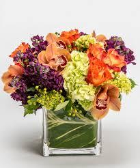 seasonal archives robertson u0027s flowers