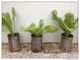 fabriquer cache poubelle transformer des gobelets en plastique en pot à semis à très bas