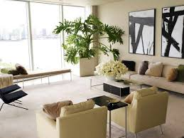 plants that grow in dark rooms plant in living room for decoration ecedb on unexpected ways to