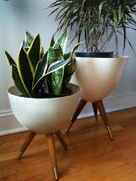 Modern Houseplants by Bullet Planters Bullet Planters And Miniatures