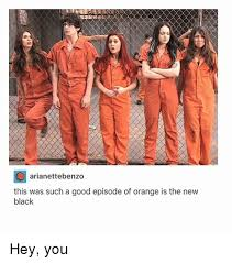 Orange Is The New Black Meme - 25 best memes about orange is the new black orange is the new