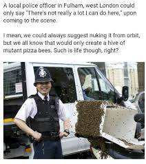 Pizza Delivery Meme - bees mistake a pizza delivery bike for their hive meme by