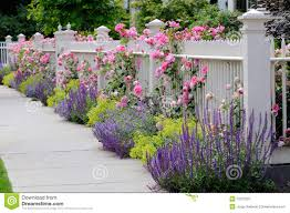 22 best fence images on pinterest patio ideas vinyl records and