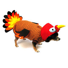 turkey costume with same day shipping baxterboo