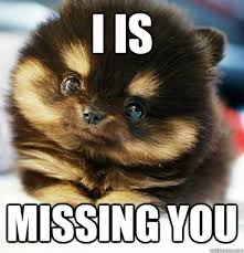 Miss You Meme Funny - the top 10 best blogs on missing someone