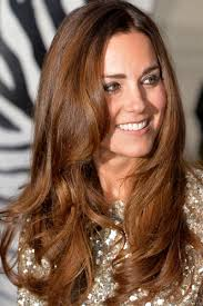 Best Natural Highlights For Dark Brown Hair Short Dark Brown Hair Graced Honey Blonde Highlights For Cool