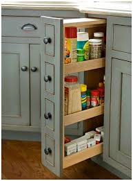kitchen cabinet interior design 25 best spice cabinets ideas on spice storage