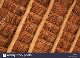 Mexican Thatch Roofing by Palm Thatch Roof Stock Photo Royalty Free Image 11591214 Alamy