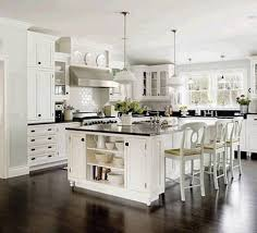Shaker Style White Kitchen Cabinets by Kitchen Fascinating White Kitchen Design With White Cabinet And