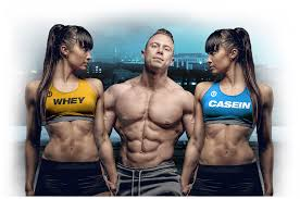 Casein Protein Before Bed Buy Micellar Casein Protein 2kgs Uprotein