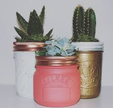 Unusual Home Decor Accessories by Succulent Jar Beautifully Hand Painted Ball Mason Jars Home