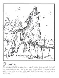 coyote free coloring pages on art coloring pages